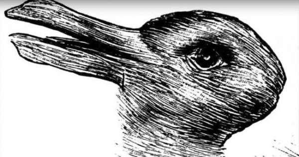 Кролик-Утка