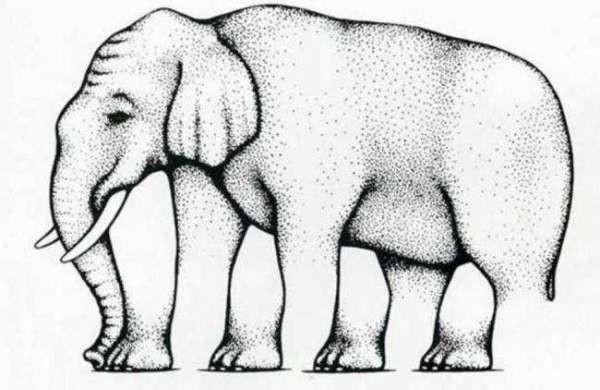 Невероятный слон