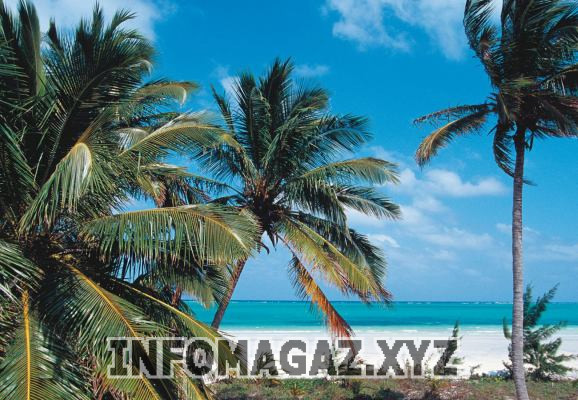 Топ-10 самых дорогих и роскошных островов в мире